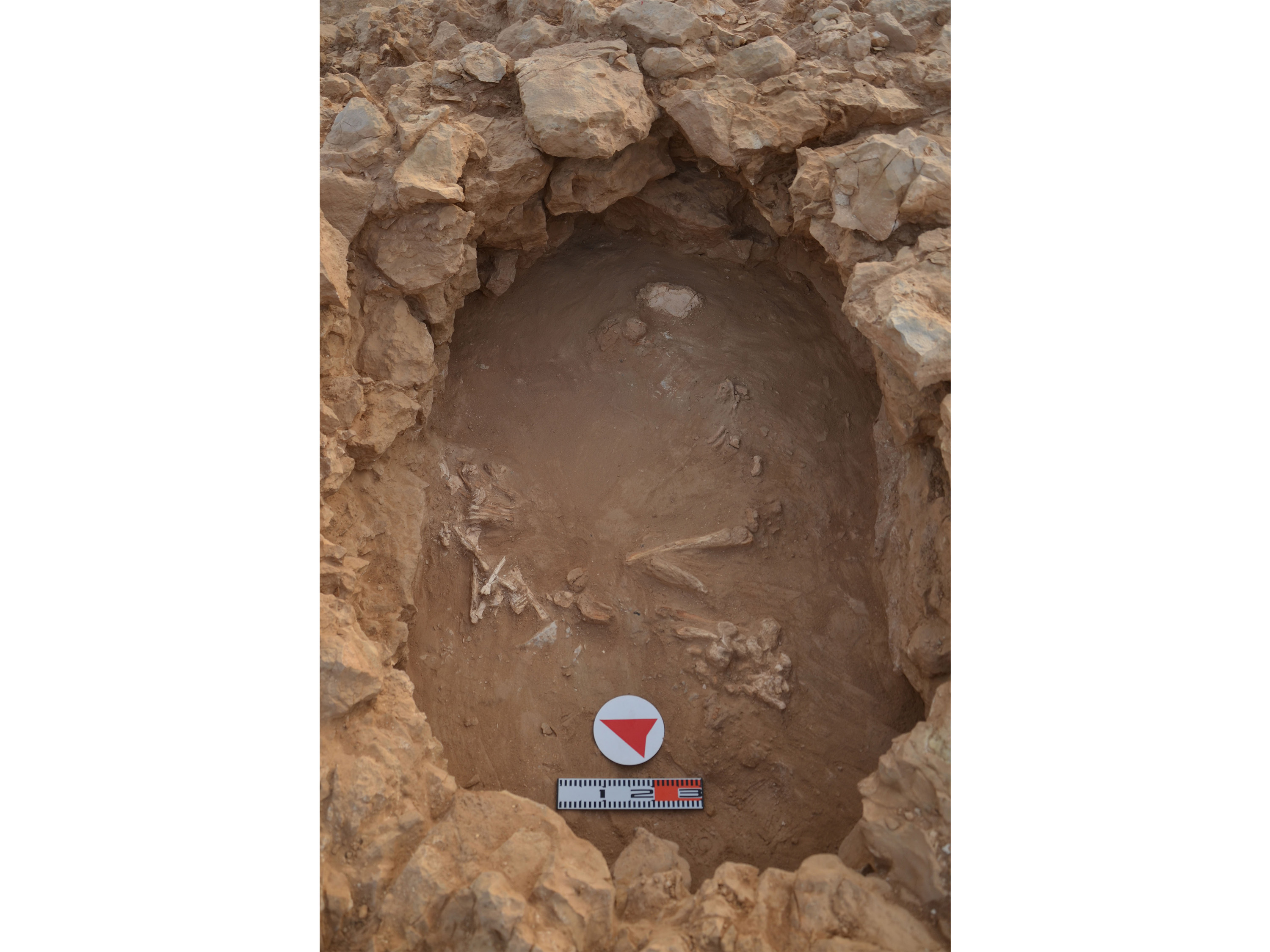 Ancient human bones unearthed from a Dilmun burial mound