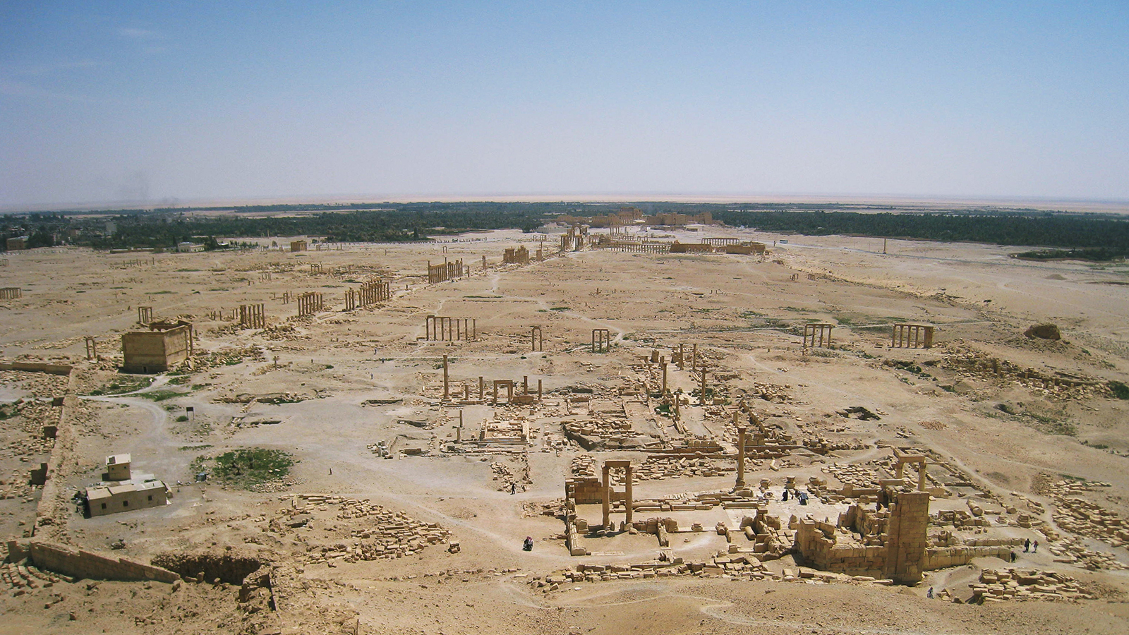 The Project on The Archaeological Research Project on the Sites of Palmyra